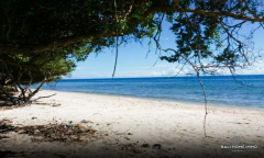 Image 2 from 2 Bedroom Beachfront Villa For Sale Freehold in Sumba