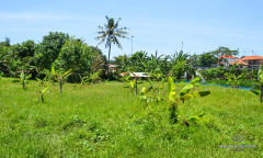 Image 2 from Land For Leasehold In Canggu