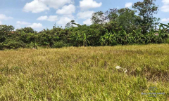Image 2 from Land for sale feehold in Canggu - Batu Bolong