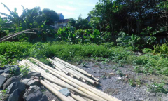 Image 1 from Land for sale freehold in Canggu - Berawa