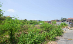 Image 2 from Land for sale freehold in Canggu - North side