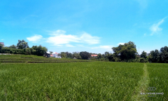 Image 1 from Land For Sale Freehold In Echo Beach, Canggu