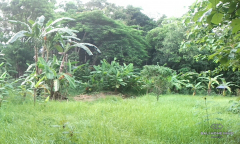 Image 3 from RIVERSIDE LAND FOR SALE FREEHOLD IN KABA-KABA, TANAH LOT AREA