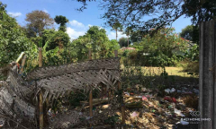 Image 3 from Land for sale freehold in Kerobokan