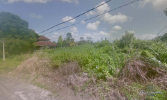 Image 1 from Land For Sale Freehold in North Canggu