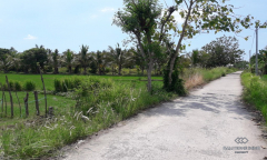 Image 1 from Land For Sale Freehold in North Lombok