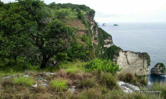 Image 1 from Land for sale freehold in Nusa Penida Island