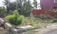 Image 1 from Land for Sale Freehold in Nyanyi, Tanah Lot