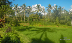 Image 2 from Land For Sale Freehold in Pupuan - Tabanan