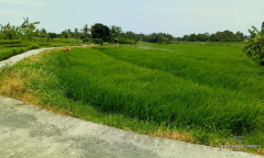 Image 1 from Land for sale freehold in Tanah Lot
