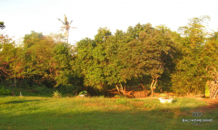 Image 3 from Riverside Land for Sale Freehold in Umalas