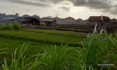 Image 3 from Land for sale freehold in Umalas