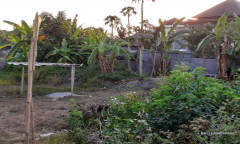 Image 2 from Land for sale freehold in Umalas