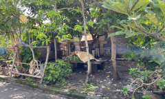 Image 1 from Land For Sale Leasehold Best Deal in Umalas