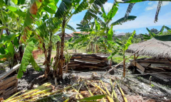 Image 1 from Land For Sale Leasehold in Batu Bolong