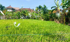 Image 1 from Land For Sale Leasehold in Berawa