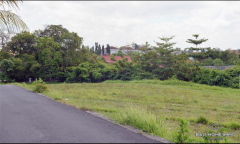 Image 3 from Land For Sale Leasehold in Canggu - Batu Bolong