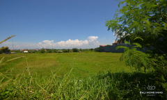 Image 1 from Land For Sale Leasehold in Canggu - Berawa
