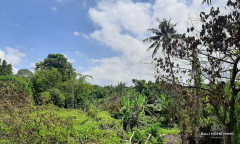 Image 1 from Land For Sale Leasehold in Canggu