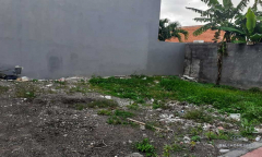Image 1 from Land For Sale Leasehold in Padang Linjong - Canggu