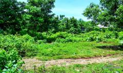 Image 2 from Land For Sale Leasehold in Uluwatu, Bukit Peninsula