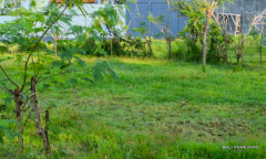 Image 3 from Land For Sale Leasehold in Umalas