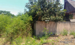 Image 2 from Land For Sale Leasehold Perfectly Located in Batu Bolong - Canggu