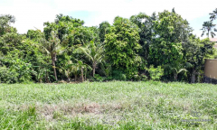 Image 3 from Land For Sale Leasehold Perfectly Located in Pererenan