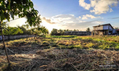 Image 2 from Land For Sale Leasehold Perfectly Located in Pererenan