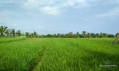 Image 2 from Land For Sale Leasehold In Tabanan - Klecung Beach