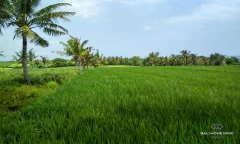Image 3 from Land For Sale Leasehold In Tabanan - Klecung Beach
