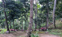 Image 3 from Land & Restaurant For Sale Freehold in Tabanan