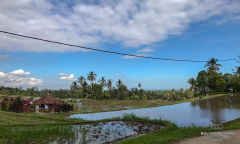 Image 2 from Land & Restaurant For Sale Freehold in Tabanan