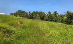 Image 1 from Land With Ricefield View For Sale in Tanah Lot Area