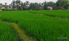 Image 1 from Land With Ricefield View For Sale Leasehold in Berawa