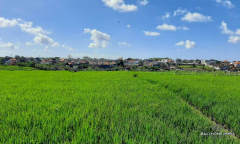 Image 3 from Land with Ricefield View For Sale Leasehold in Buduk - North Canggu