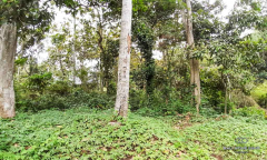 Image 3 from Land With Ricefield View For Sale Leasehold in Kedungu, Tabanan