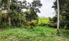 Image 1 from Land With Ricefield View For Sale Leasehold in Kedungu, Tabanan