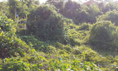 Image 2 from Land for Sale Freehold nearby the beach in Canggu - Batu Bolong