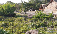 Image 3 from Land for Sale Freehold nearby the beach in Canggu - Batu Bolong