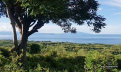 Image 1 from Ocean View Land For Sale Freehold in Nusa Penida