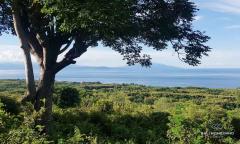 Image 1 from Tanah Dengan Pemandangan Lautan Dijual di Nusa Penida