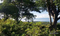 Image 2 from Ocean View Land For Sale Freehold in Nusa Penida