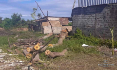 Image 1 from Land for sale freehold in Pererenan - Tumbak Bayuh