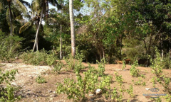 Image 1 from Riverside Land For Sale Freehold in Pantai Nyanyi