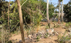 Image 2 from Riverside Land For Sale Freehold in Pantai Nyanyi