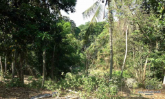 Image 3 from Riverside Land For Sale Freehold in Pantai Nyanyi